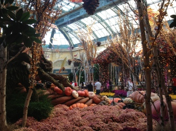 The conservatory at the Bellagio